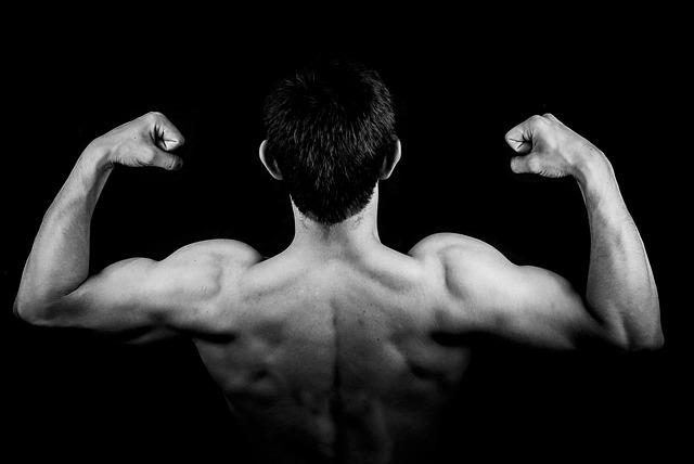 筋肉トレーニングの基本